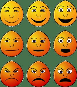 El proceso de regulación de emociones y sentimientos