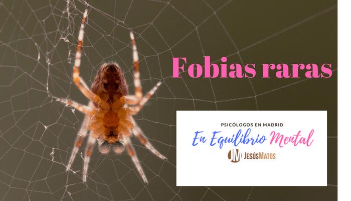 Fobias raras: fobias que te sorprenderán