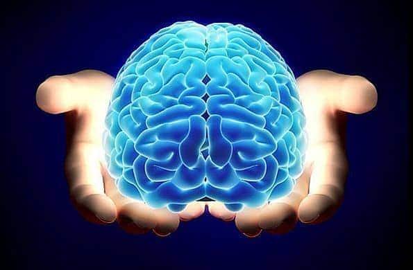 fisiología de las emociones - Fisiología de las emociones